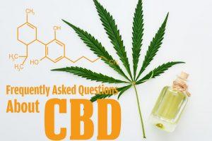 CBD製品のよくあるご質問【Q&A】